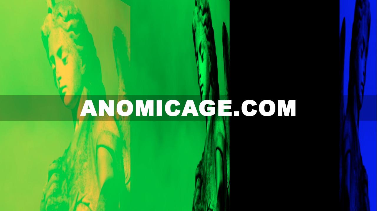 Anomic_Age_Angel_Split