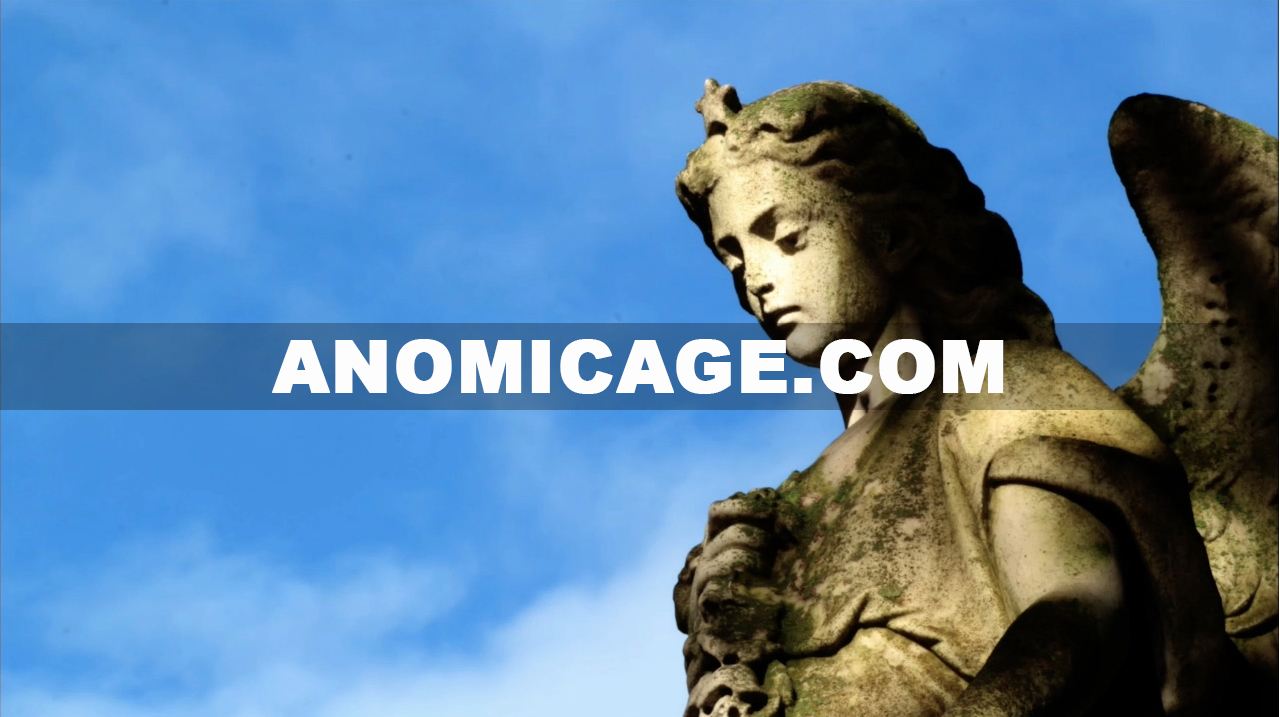 Anomic_Age_Angel