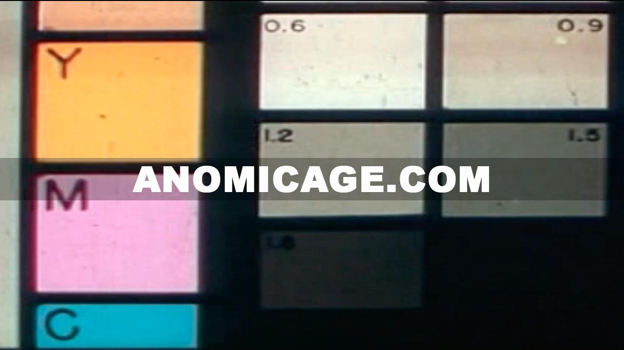Anomic_Age_Color
